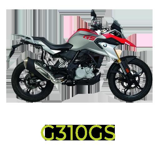 G310GS