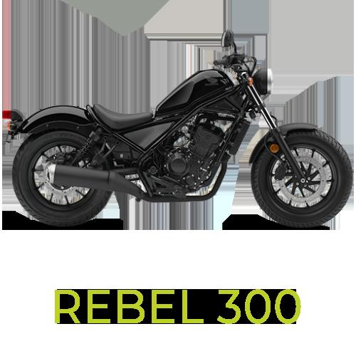 Rebel 300